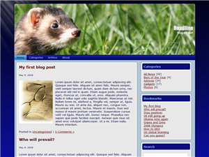 Wild Ferret Free Wordpress Theme